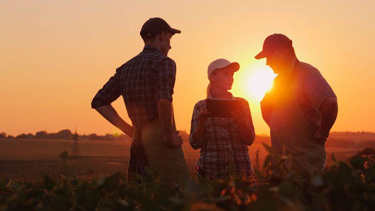 Presença crescente de startups no agronegócio atrai jovens para o setor
