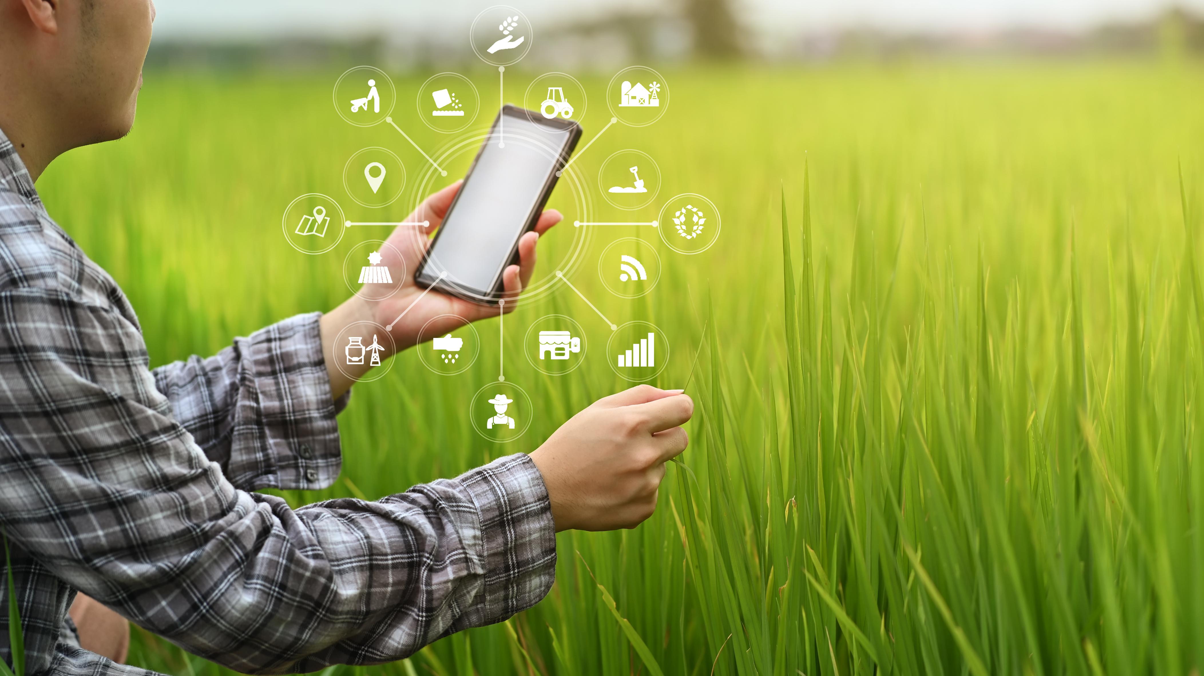 Transformação digital é fundamental para a maximização dos resultados do novo agro brasileiro
