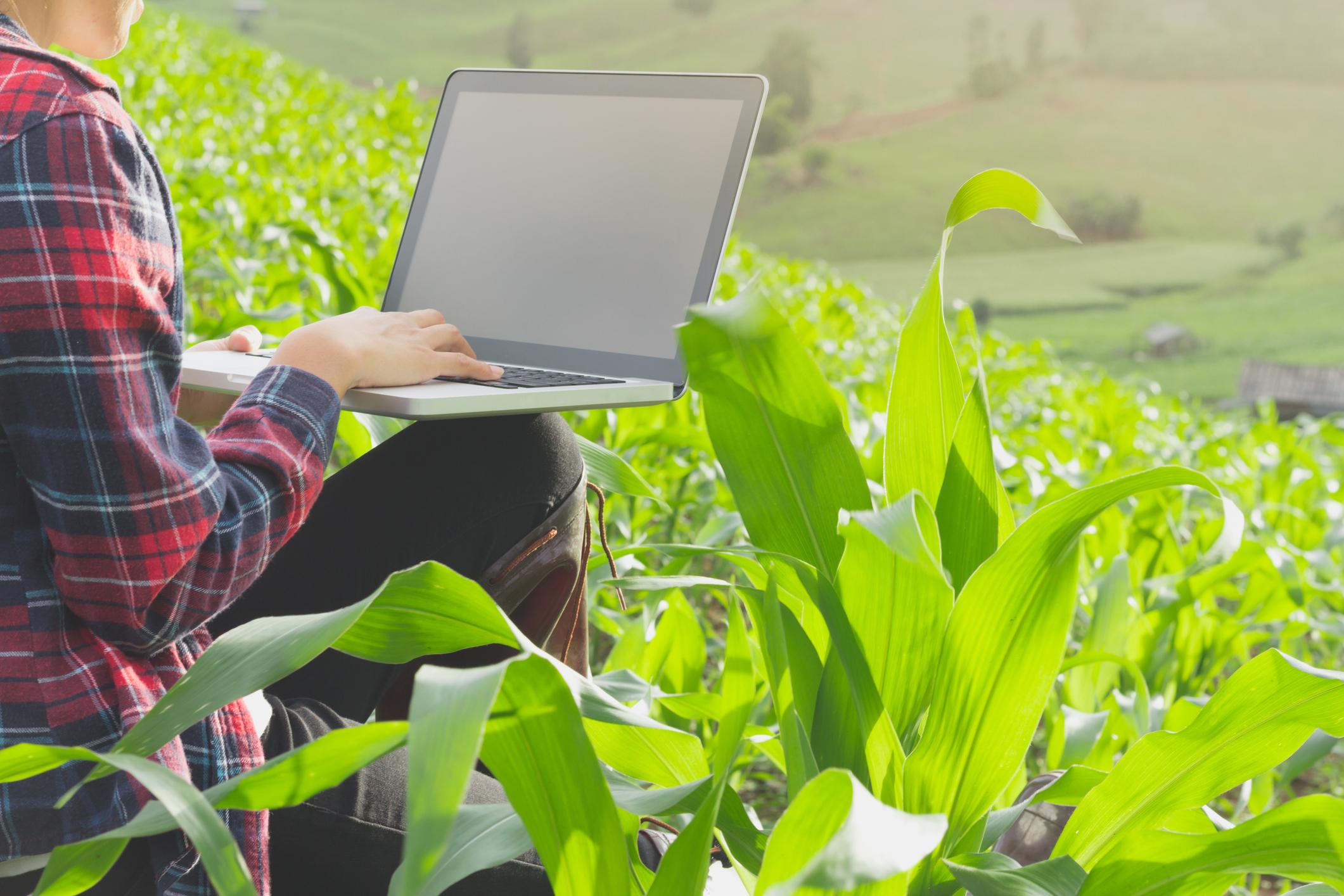 A inovação chega ao campo pelas mãos dos jovens e suas startups